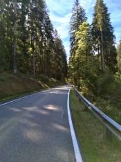 Het Pfälzerwald in.