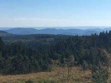 Schwarzwald.