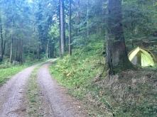 Kampeerplaats 2, in't bos.