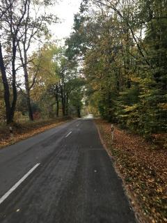 Herfst in Duitsland.