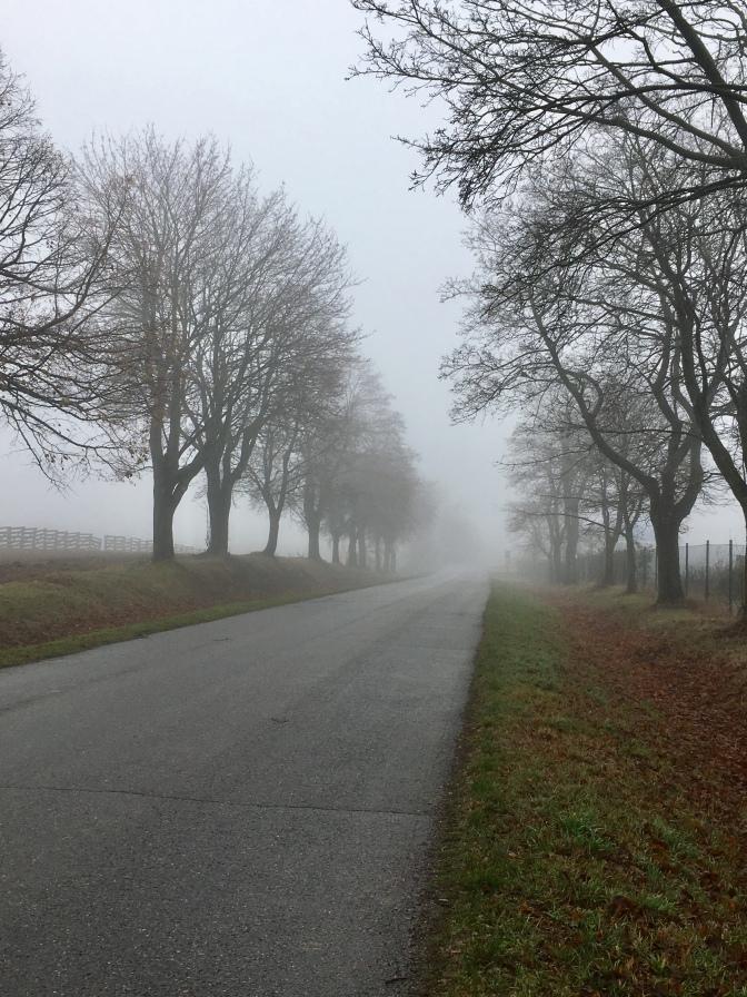 Grijze mistige dagen in Tsjechië.