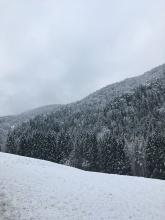 Winterlandschap op mijn laatste fietsdag.