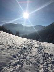 Lunz am See - Eindelijk weer zon.