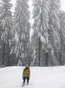Wandeling met Sam en Saoirse, toen er nog niet zo veel sneeuw lag... (15/12).