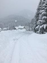 Veel sneeuw de eerste weken van januari.