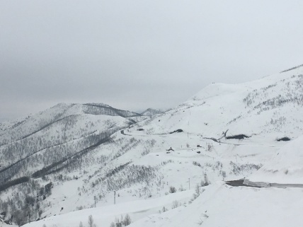 Weg door de sneeuw.