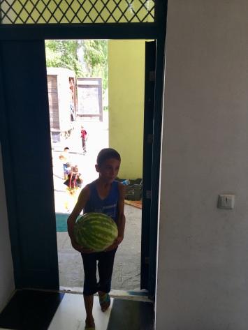 Levering van meloenen.