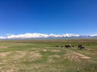 Welcom to Kyrgyzstan.