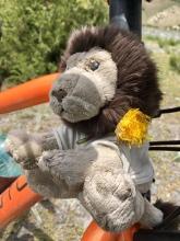 Rudi wordt in de bloemetjes gezet.
