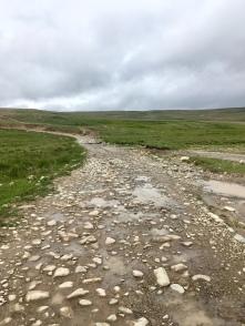 De wegen in Deosai zijn niet van topkwaliteit.