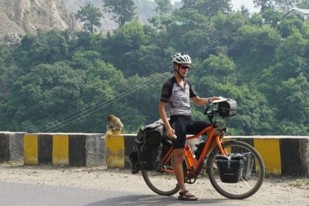 2 apen in India.