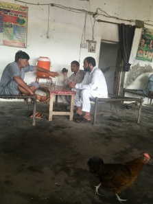 Vind de kip in het wegrestaurant.