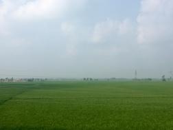 Punjab.