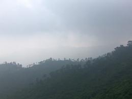 Vochtig, mistig heuvellandschap.