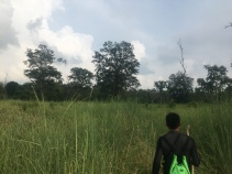 Jungle tocht.