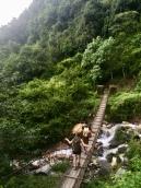 Poon Hill trekking.