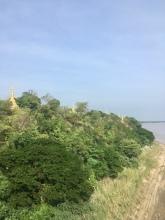 Meer Pagoda's.