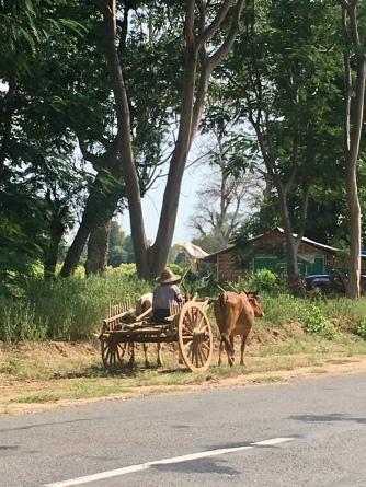 Primitieve vormen van transport ook nog steeds.