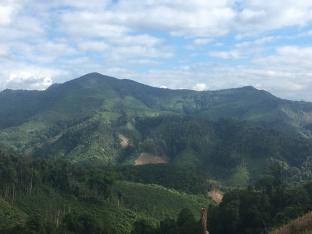 Groene heuvels van Laos.