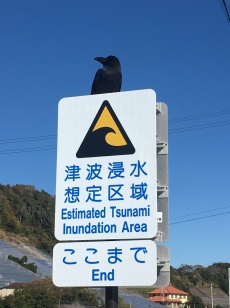 Tsunami voorzorgsmaatregelen in Japan.