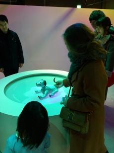 Robothonden in Japan.