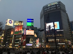 Shibuya crossing, Tokio.